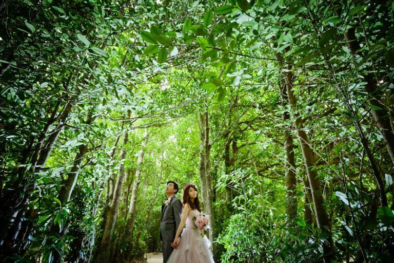我們的婚禮代辦愛戀旅行社
